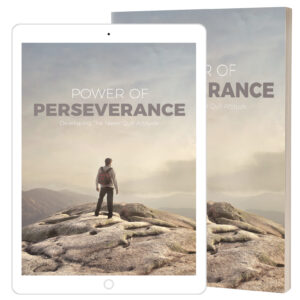 Power Of Perseverance ebook cover