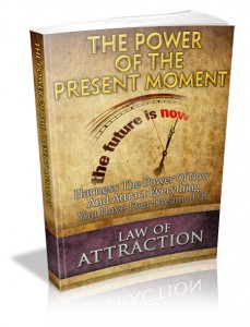 Power of the Present Moment ebook